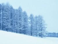 冰雪摄影技巧大盘点