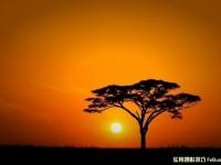实用摄影技巧拍出完美落日
