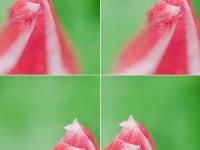 5个让新手提高水平的拍摄练习