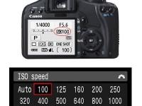 摄影新手必学感光度ISO是什么?