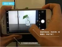 手机摄影必须遵守的6个原则