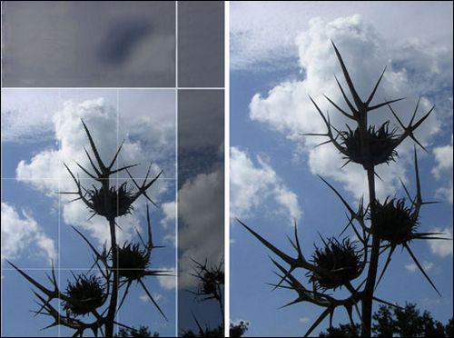 摄影构图:用照片讲故事