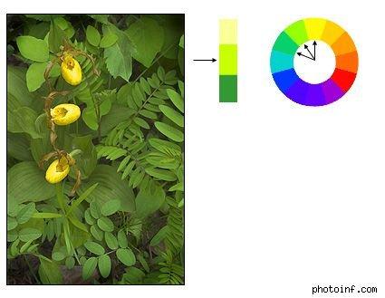 如何用一张照片记录不同时间