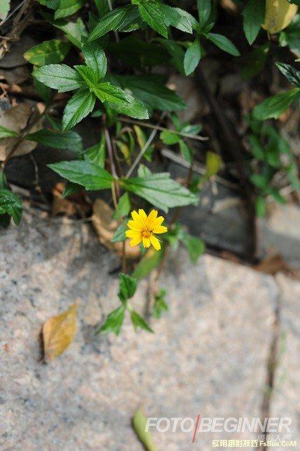 2012年11月23日 - A加佳 - A加佳的学习小屋