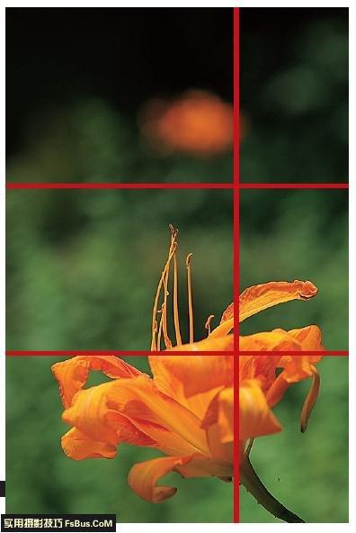 实例解析4种形成构图线的方法