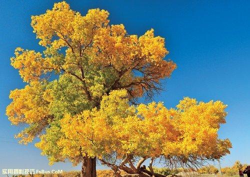 风光摄影中色彩的运用
