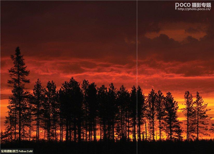 实用对焦技巧拍出清晰照片