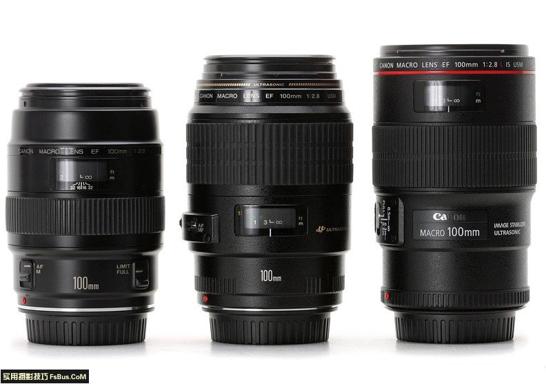 学习全新视角微距摄影