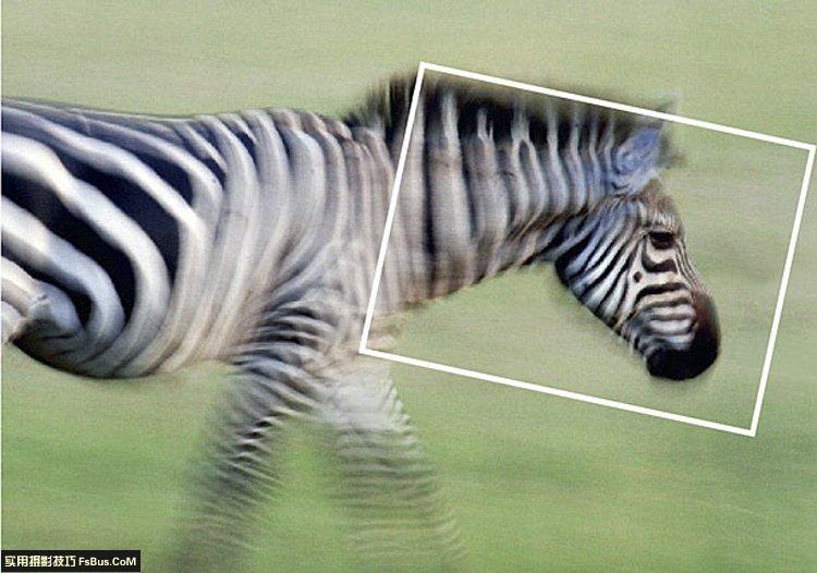 职业摄影师使用相机的6个细节