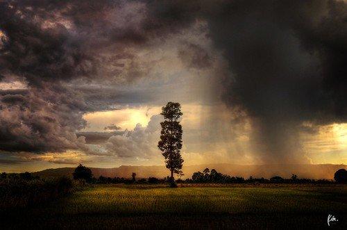 阴雨天巧妙用好柔和光线
