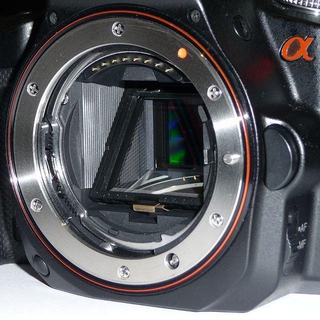 摄影新手进阶:什么是移焦