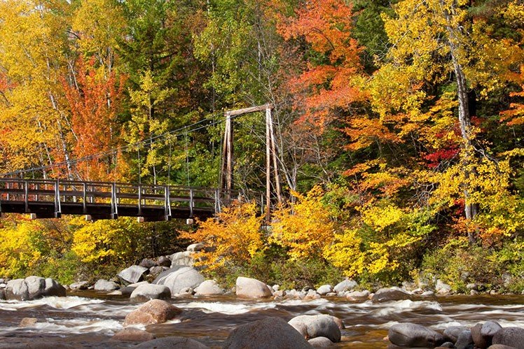 7 个「秋天风景」的必学摄影技巧