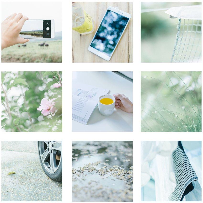 从色彩到构图教你拍出清新生活静物