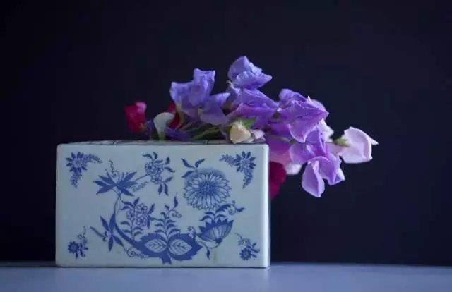 花卉摄影必知的6个攻略