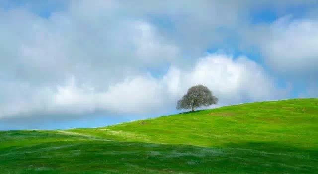 风光摄影在不同光线条件下拍摄要点