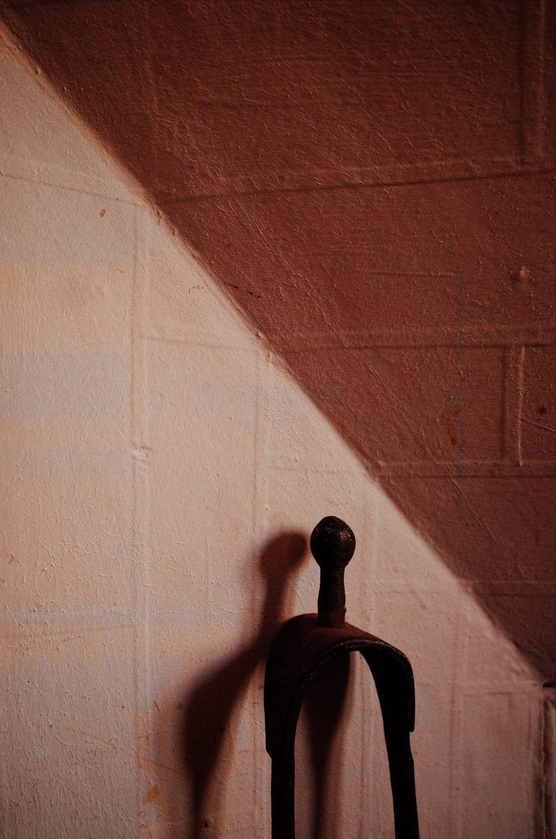 拍摄瓶颈期尝试微距摄影去捕捉细节