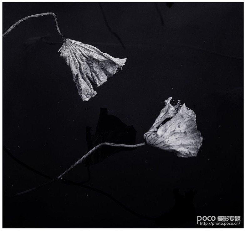 教你如何拍出中国风的意境